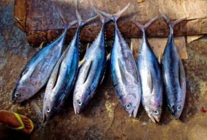 Read more about the article 3 reasons why you should eat less fish