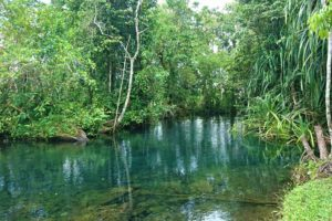 Read more about the article 5 reasons why you should explore the highlands of West Papua