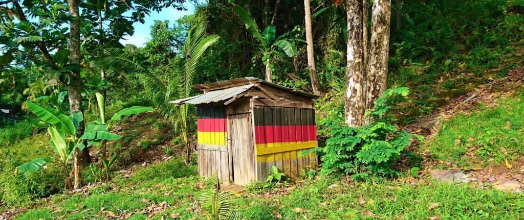 Wooden hut with German flag in the jungle